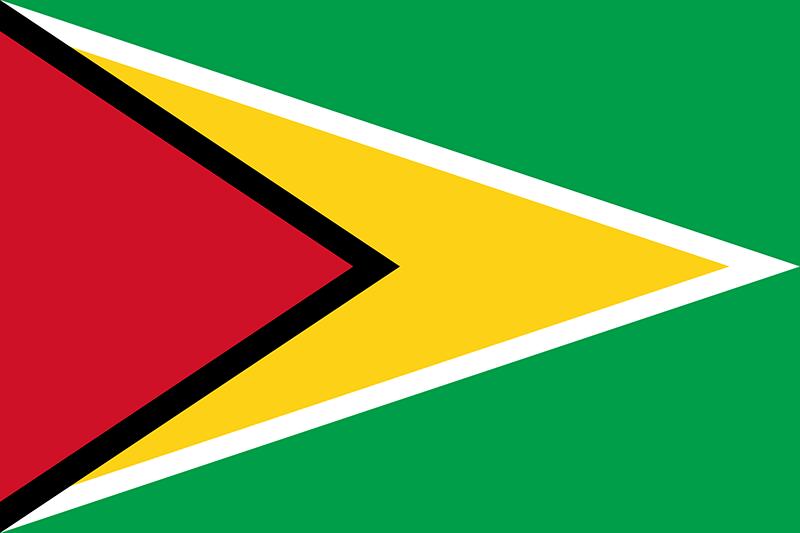 flag_0006_guyana